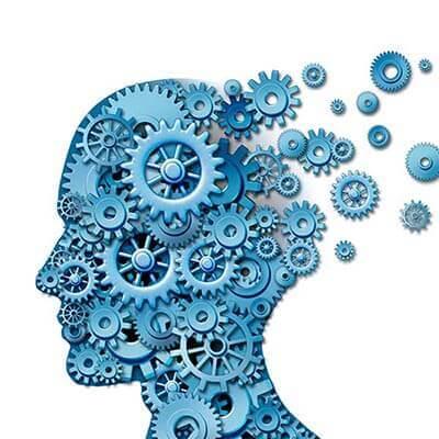 Neuro & Focus